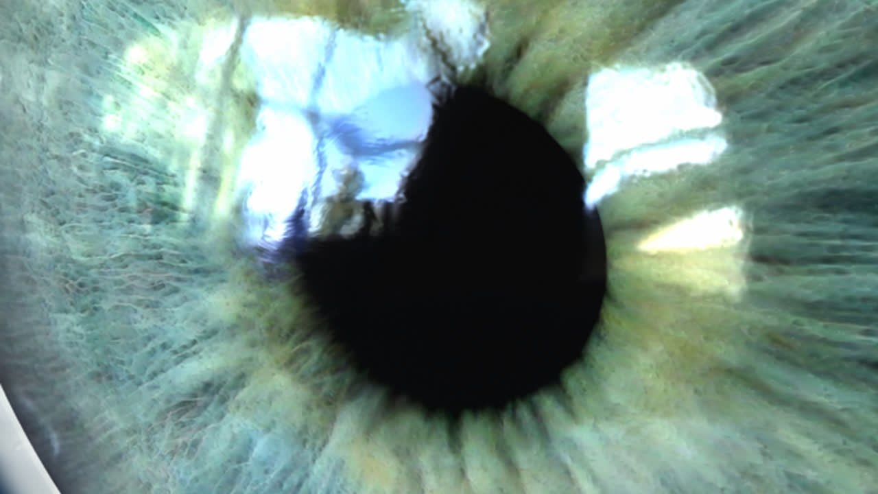 Pupil Your Eye Dr